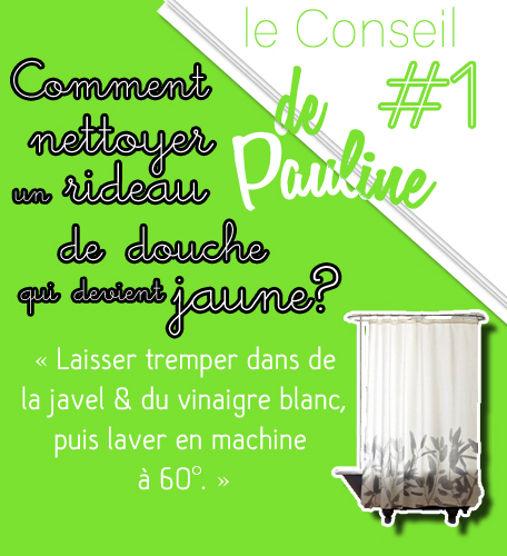 Conseil--1-Pauline
