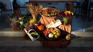 thanksgiving-736505_640